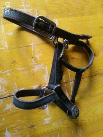 Troca Material de equitação