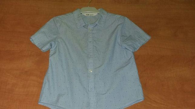 Koszule wizytowe dla chłopca z długim i krótkim rękawem 104-116