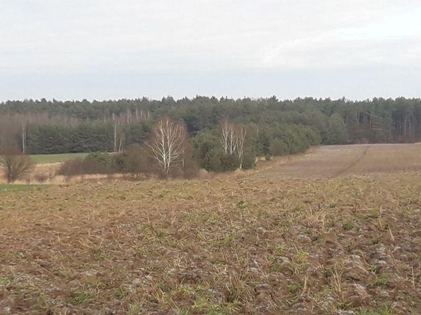 Działka rolno-leśna 1,4 ha