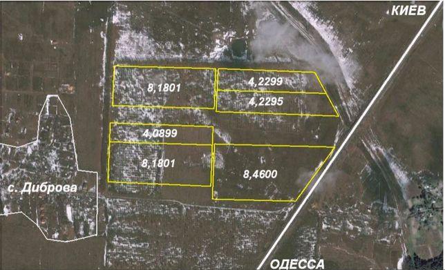 Продажа 2-х земельных массивов 16,7га и 20,7га, с. Диброва (Васильков)