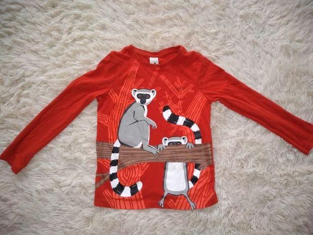 Bluzka chłopięca rozm.128 Lemury