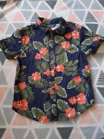 Koszule Primark 110 stan idealny koszula