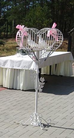 Białe Gołębie na ślub