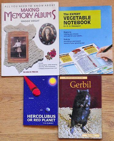 Zestaw ANGIELSKI 4 książki popularno-naukowe