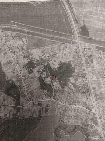 Земельна ділянка 0,16, с В.Сироватка.