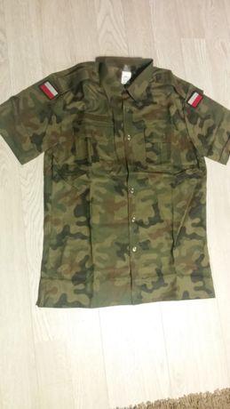 Koszulo-bluza RIP-STOP pantera US-21, rozm.40/175