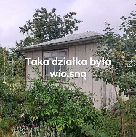 Ogród dzialkowy ROD