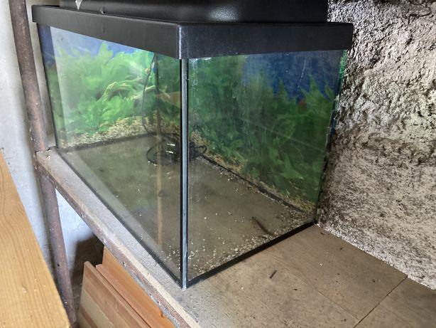 Akwarium 60l