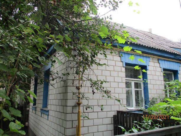 Продается дом в Дружне