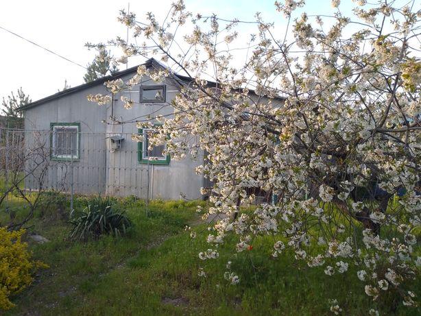 Дача в СТ Садко (дальние сады)