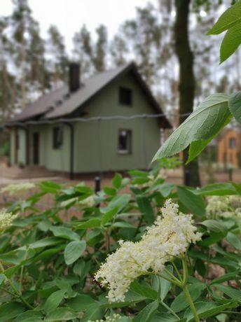 Domek Lawendowa Przystań Perkowo