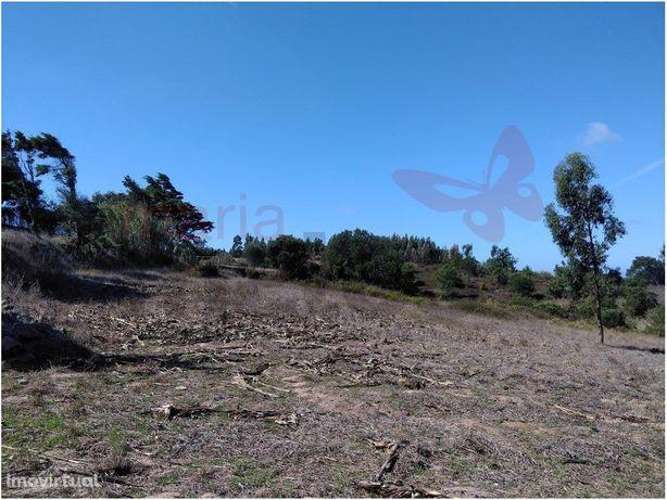 Terreno rústico agrícola com 14.800 m2