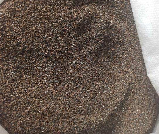 facelia poplony gorczyca rzodkiew wyka słonecznik gryka łubin wysyłka