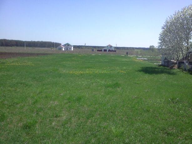 Продам земельну ділянку 18.85 соток в с. Рожни, 30 км. від Києва.