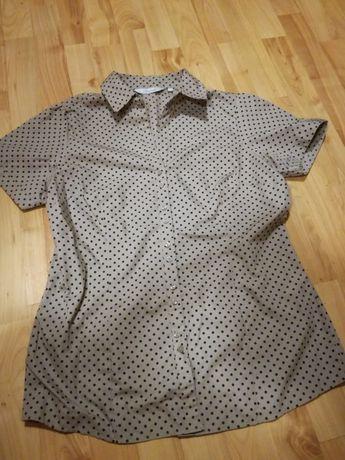 Koszula damska w kropki 42