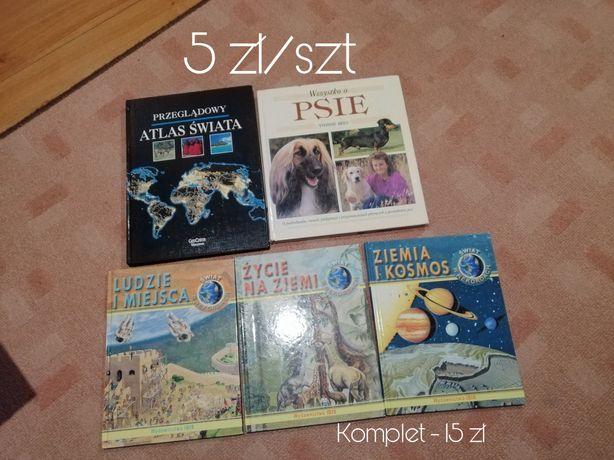 Książki dla dzieci, naukowe, szkolne