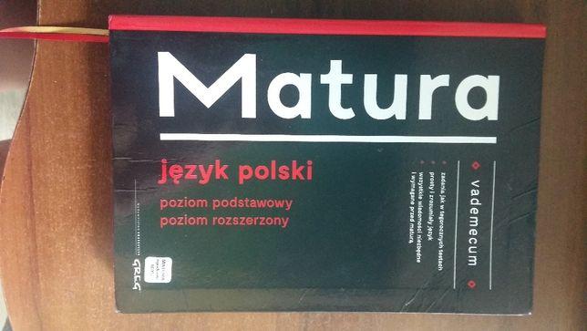 Vademecum matura - język polski, podstawa i rozszerzenie, greg