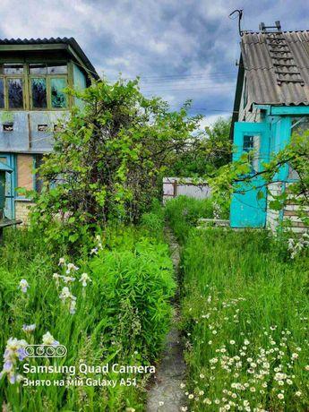 Продам будинок в Бородянському р-ні, с. Шибене