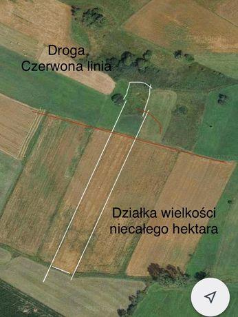 Działka rolna