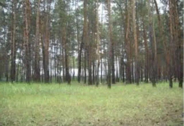 Земельный участок Святогорск 10 соток
