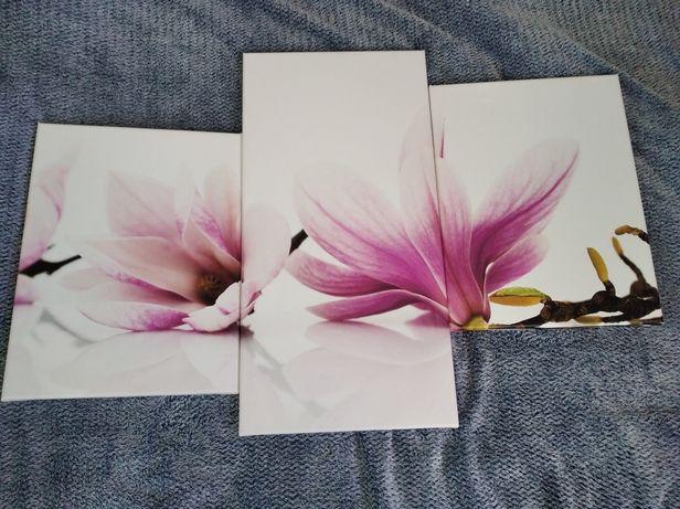 Obraz magnolia 3el.