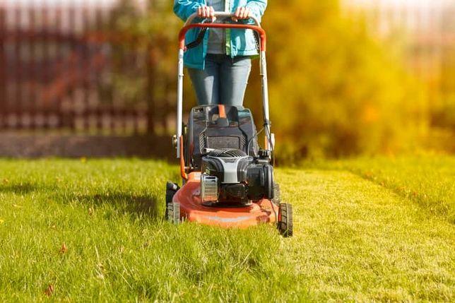 Koszenie traw i terenów zielonych
