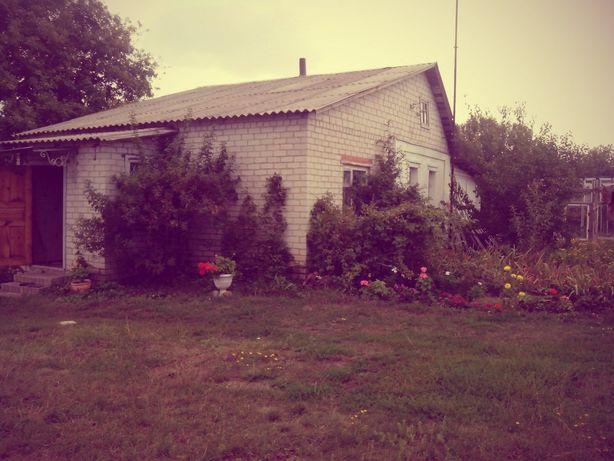 Продам дом в Харьковской области, Золочевский район.