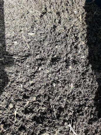 Naturalny nawóz pod iglaki 50 l KOMPOST KWAŚNY