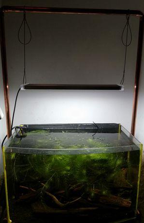 Lampka do akwarium