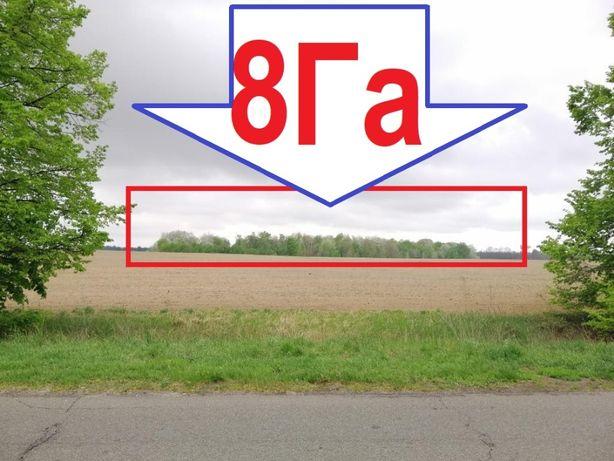 Отличный Участок для бизнеса! 8Га Бориспольский район Ревное, Процев!