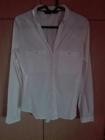 Bluzka Zara basic, rozmiar M