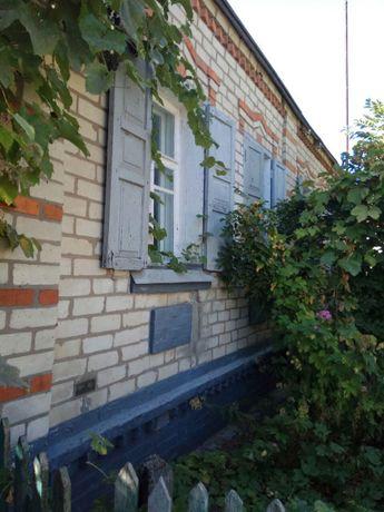 Продам дом в центре п.Солоницевка ( Ольшаны)