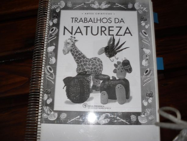 Livros de artes criativas