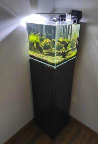 Zestaw akwarium LED optiwhite typu kostka z szafka i życiem