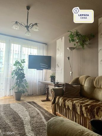 Mieszkanie, 49,33 m², Chełm