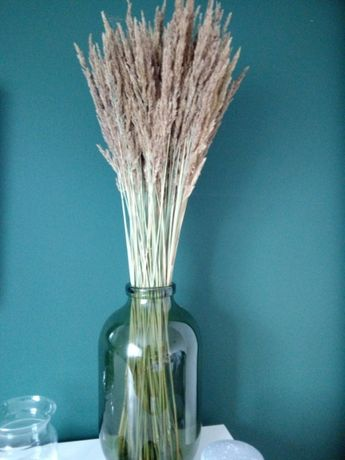 Naturalna trawa suszona dekoracje ślubne bukiety