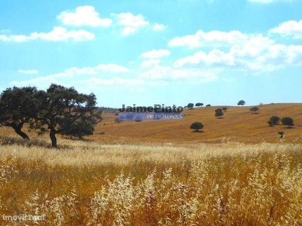33 ha de terra ondulada para vinha. Portugal, Alentejo, Beja, Almod...