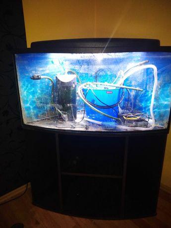 akwarium narożne ok 180-200l + wyposażenie
