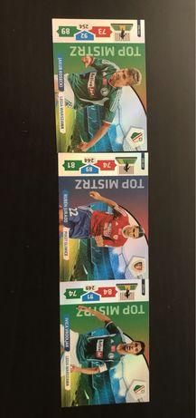 Karty top mistrz ekstraklas 2013/2014