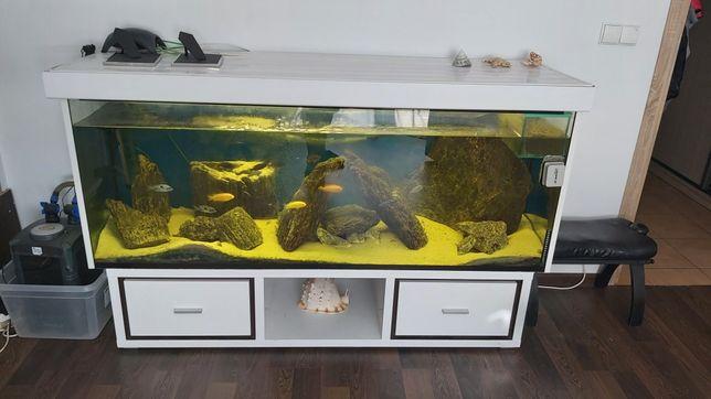 Akwarium  500 litrów
