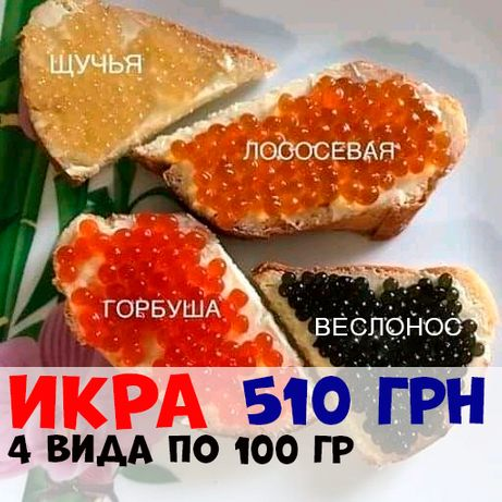 Икра: красная, черная, щучья 100 грамм 100 грн.