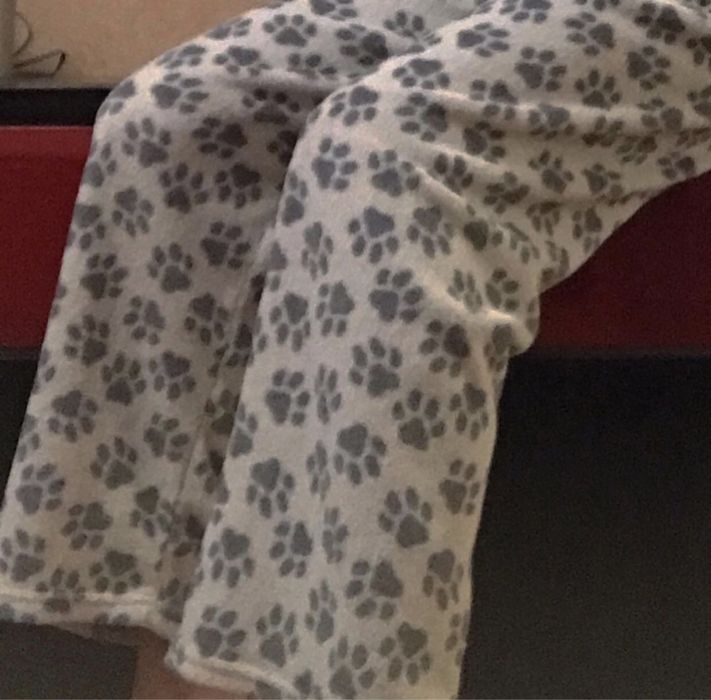 штаны принт лапки Николаев - изображение 1