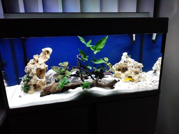 Aquario com móvel
