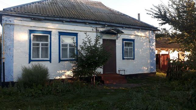 Продам будинок у Згурівці