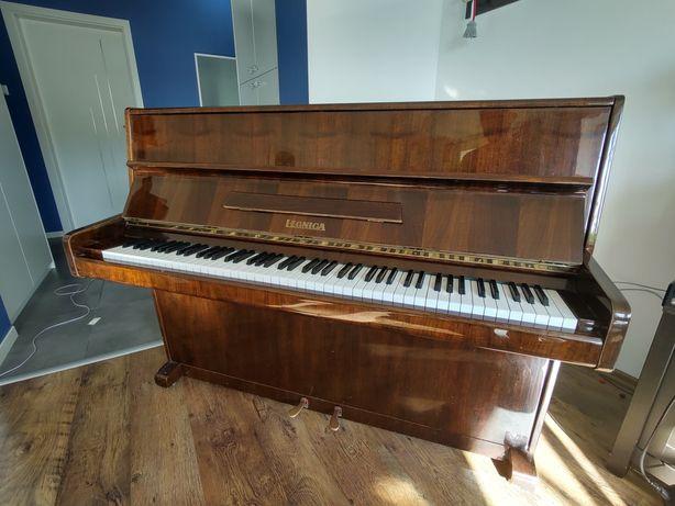 Pianino Legnica 1975