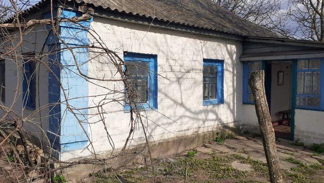 Дом и участок 50 сот по дороге Киев - Чернигов село Лемеши MAA