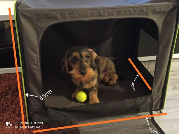Transporter dla psa rozmiar L