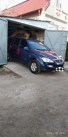 Комплект украшений на машину