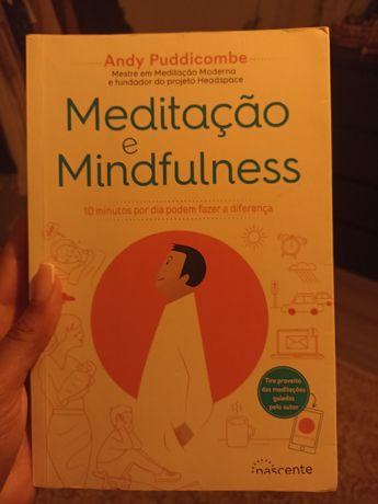 Meditação e Mindfulness, Andy Puddicombe