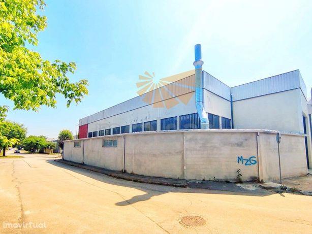 Pavilhão - 750 m2 - Braga
